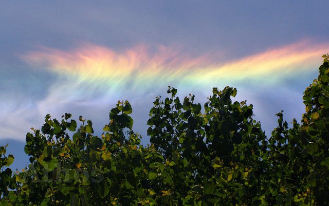Fire Rainbow can be seen in the background. (Credit: Attila Magyar, via flickr)