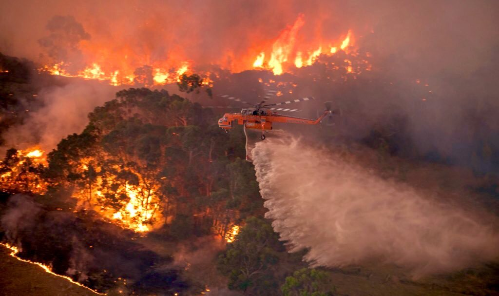 Australian firefighters are doing their best to control the wildfires