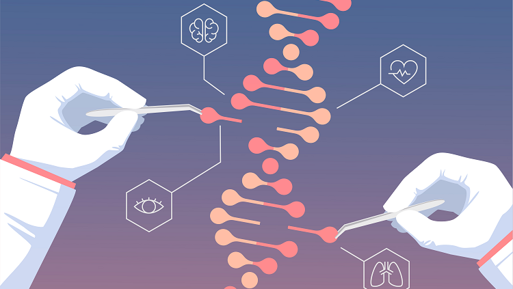 Japanese scientists discovered CRISPR even before 1987, but the repeated sequences of DNA (CRISPR) were so enigmatic that they could not understand what they had discovered.  (Image Credit: istock.com/Panuwach)